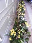 Flowers 086